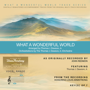 Download What a Wonderful World Backing Track